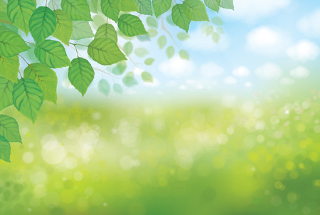 Vector nature background. 일러스트