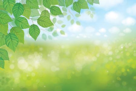 Vector nature background. Stock Illustratie