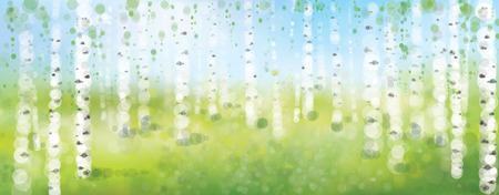 Vector birch forest,  spring bokeh background. 일러스트
