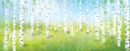 Vector birch forest,  spring bokeh background. Ilustração