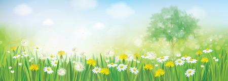 Vector spring landscape. Stock Illustratie