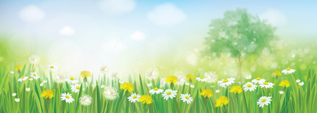 Vector spring landscape. Çizim