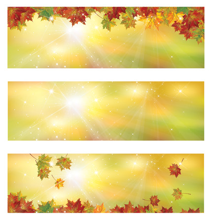 star background: Vector autumn banners. Illustration