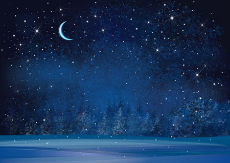 blue stars: Vector winter wonderland night background.
