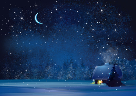 scene: Vector night winter landscape with house and forest background.