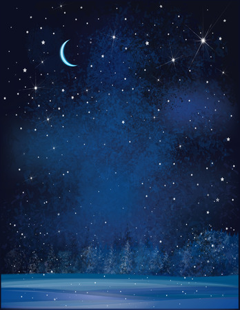 christmas winter: Vector winter wonderland night background.