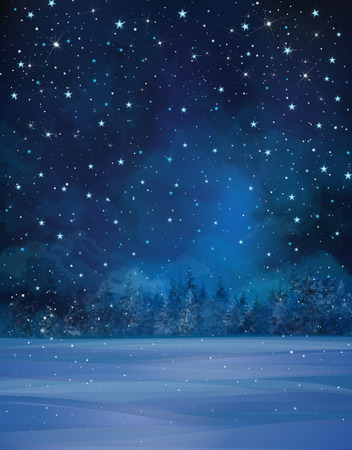 Vector winter night scene, starry sky, snow and forest background.