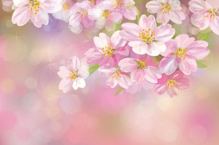 blossoming flower tree, pink bokeh background. Stock Illustratie
