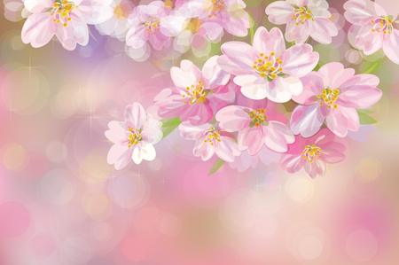 apricot tree: blossoming flower tree, pink bokeh background. Illustration