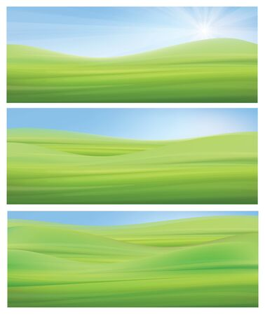 lawn grass: nature backgrounds, blue sky and green grass.