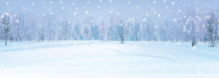 snow field: winter landscape with forest background.