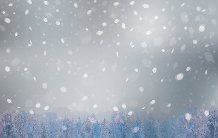 snowfalls: winter landscape, snowfall sky and forest background.