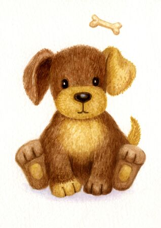 little dog: Cute puppy, watercolor.