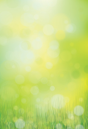 Vector green, bokeh, nature background.