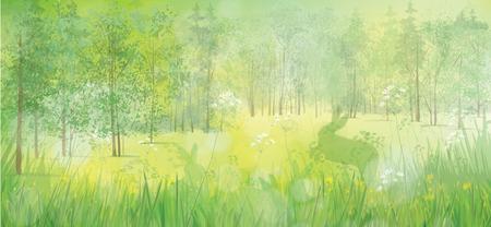 Kaninchen im Gras, Frühling Wald Hintergrund.