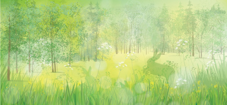rabbits in grass, spring  forest background.