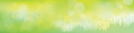 sunshine background: Vector green  nature background. Illustration