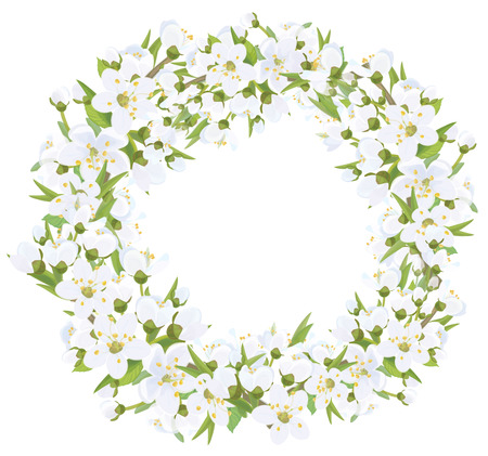 blossoming: Floral frame, cherry blossoming branches wreath. Illustration