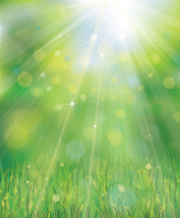 grass border: Green background with rays, lights and grass border.