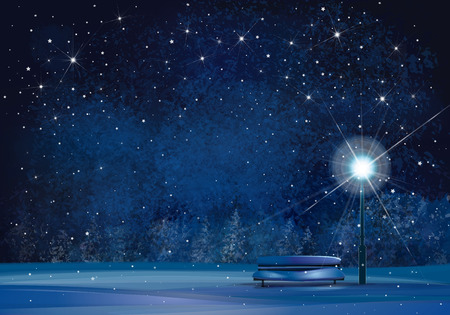 starry: Winter wonderland night background.