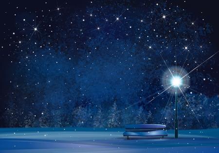 Winter Wonderland tle nocy. Ilustracje wektorowe
