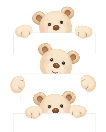 ours brun mignon tenant en blanc isolé.