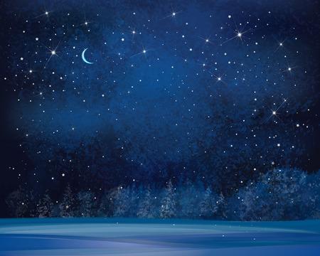 tree  forest: Vector winter wonderland night background.
