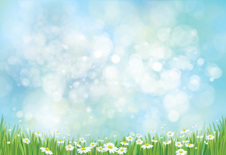 meadow spring: Vector nature background. Illustration