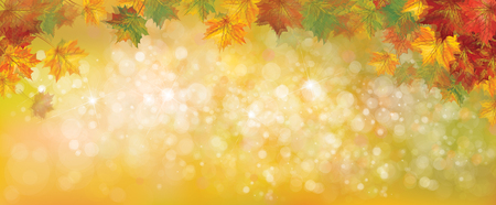 autumnal: Vector autumnal leaves on bokeh background, blurred effect.