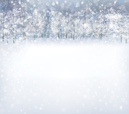 snow field: winter scene with forest background