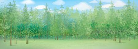 숲 배경으로 여름 풍경