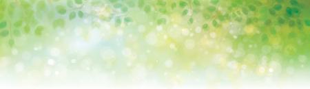 Vector green leaves border on sunshine background.