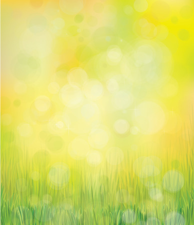 sky sun: Vector green grass  on bokeh  background. Illustration
