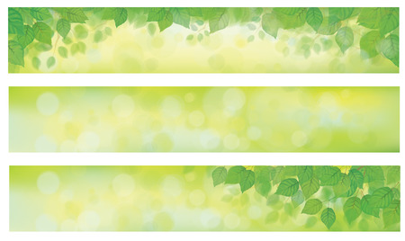 Vector green leaves on spring, bokeh banners.