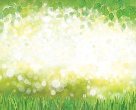 springtime: Vector summer nature  background. Illustration