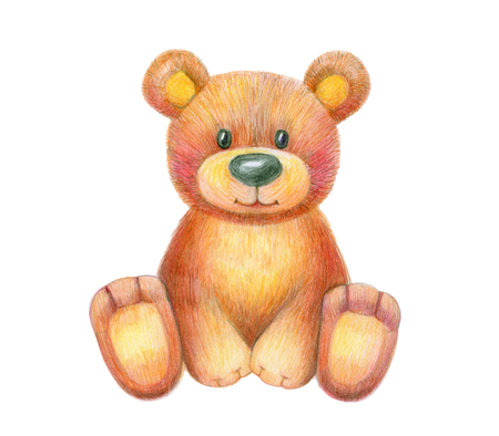 Cute  sitting baby bear  isolated, hand drawing.