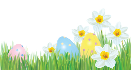 Vector Easter eggs in grass and daffodils isolated border, Easter background.