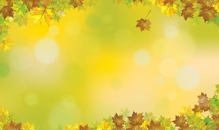 Autumnal maples leaves border, autumn vector background.