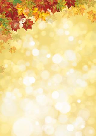 Vector arces otoñales hojas frontera, fondo otoño.