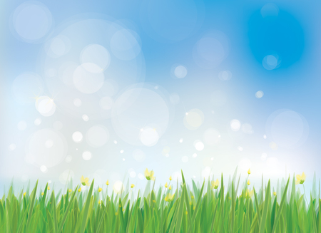 Vector spring nature background, blue sky and green grass border.