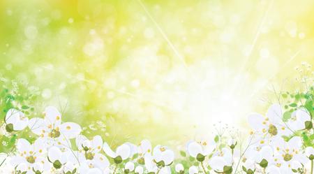 Vector spring floral background. Archivio Fotografico - 124220558