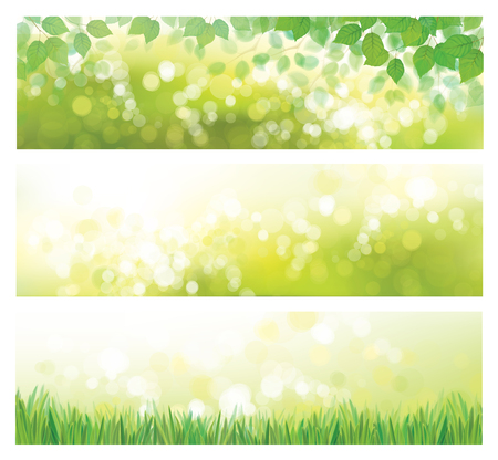 Vector  green nature banners. Green leaves  and  grass  on green  bokeh  background. Illustration