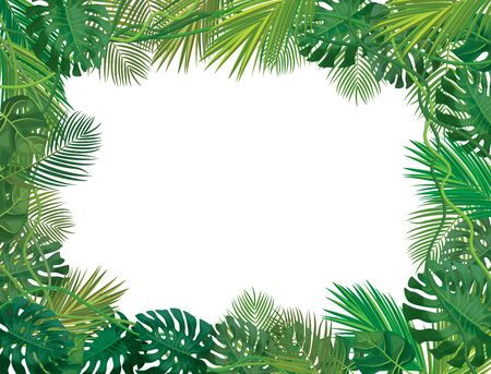 Vectot  frame,  tropical leaves isolated.
