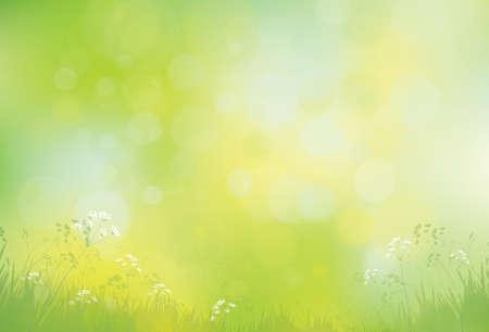Vector green, bokeh, nature background. Vektorové ilustrace