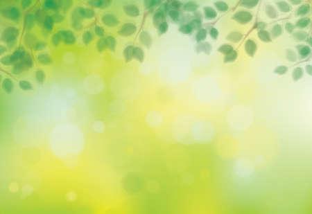 Vector green, bokeh, nature background. Green leaves border. Blurred effect. Vetores