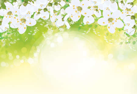 Vector floral background. White flowers and leaves border on green bokeh background.