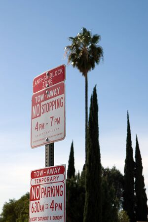 No stopping parking LA sign with palm and cypress trees in background
