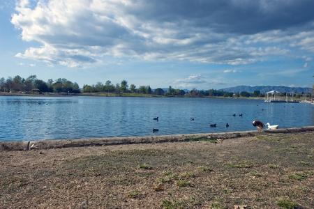 Lake in beautiful background photo