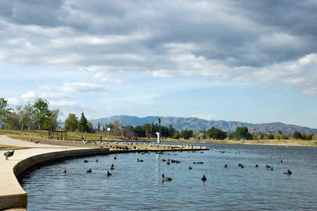 Park with ducks 写真素材