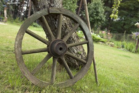 Ancient carriage wheel leaning against the tree